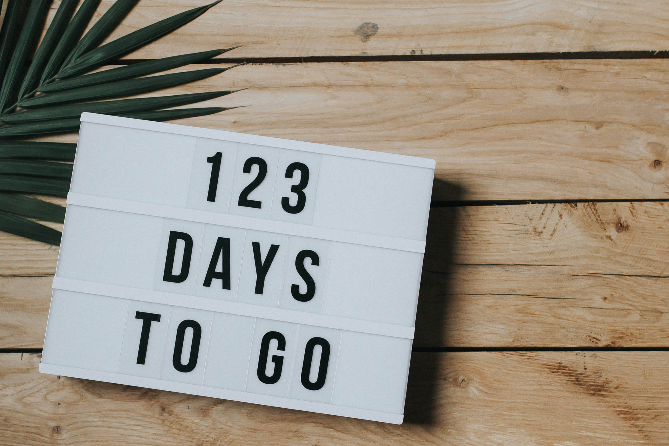 123 Days-2