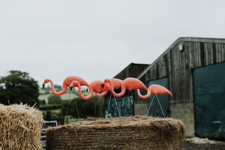 Dolau-Sheep-Farm-Wedding-Wales-United-Kingdom-039